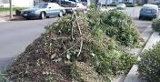 Yard Waste Removal Snellville GA